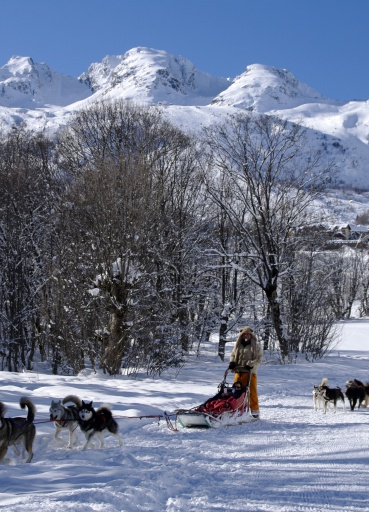 Dog sledding - Les Sybelles